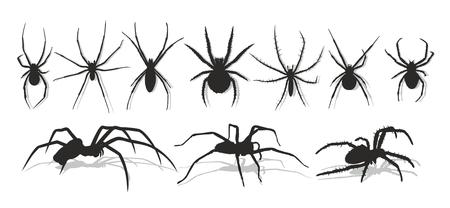 黒いクモのシルエット。  イラスト・ベクター素材