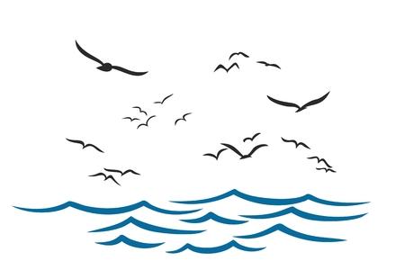 albatross: Sea with seagulls.