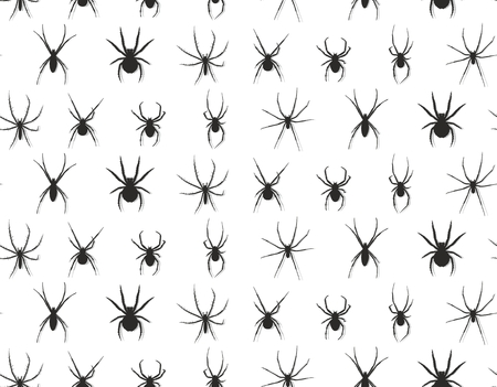 poisonous insect: Seamless background with spiders.