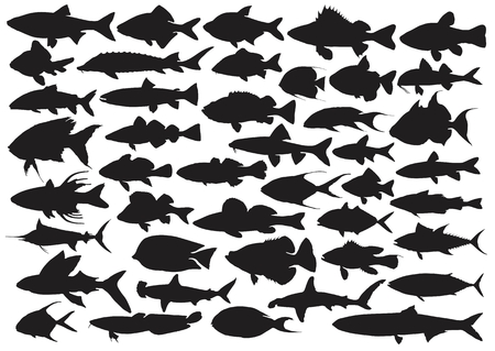 inhabitants: Set of silhouettes of sea fishes.