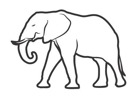Esbozo de elefante.