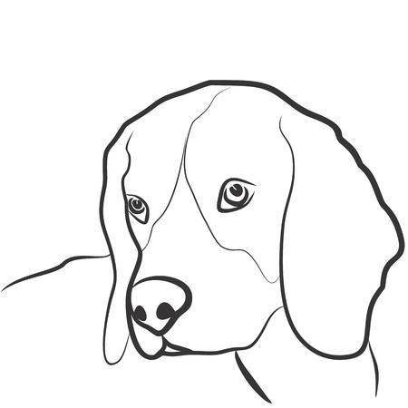 sketch: Sketch of dog.