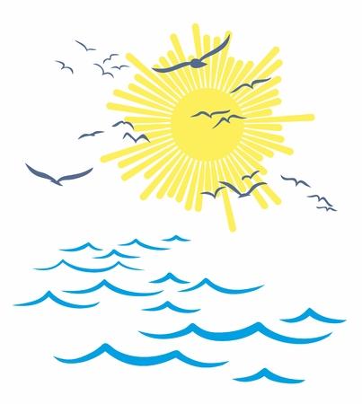 albatross: sun Dawn in the sea.