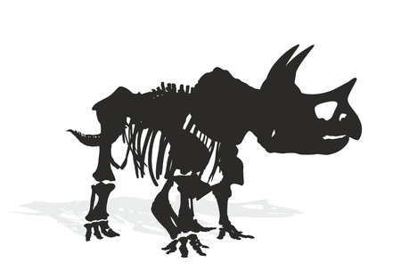 herbivorous animals: Skeleton of dinosaur. Illustration