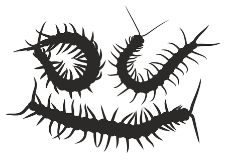 arthropods: Silhouettes of centipedes.