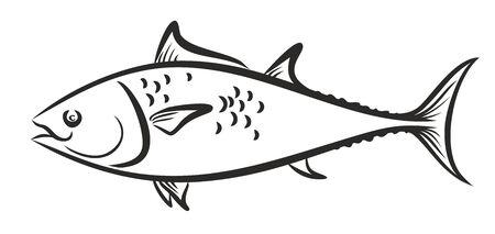 sketch: Sketch of sea fish.
