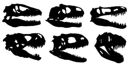 Skulls of dinosaurs. Illustration
