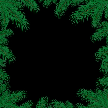 spruce: Frame with spruce branches.