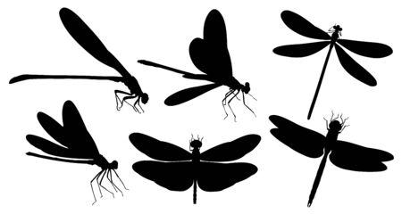 Dragonfly silhouetten.