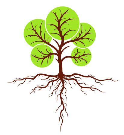 tree: Tree with roots. Illustration