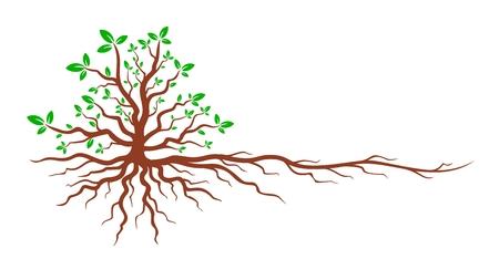 Tree with roots. Ilustração Vetorial