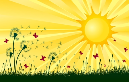Landscape with dandelions and sun. Illustration