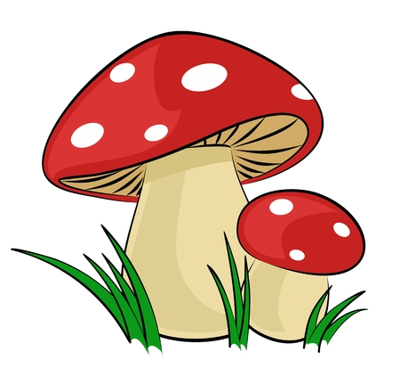 Forest mushrooms with a green grass. Illustration