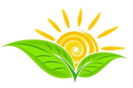 Icon of green plant with sun. Banco de Imagens - 94495855