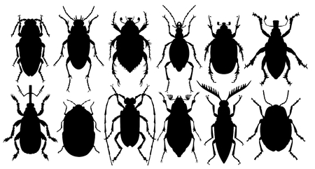 Silhouettes of bugs.