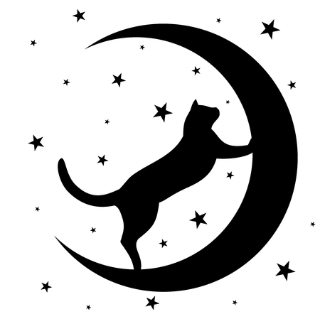 Black cat with moon. Stock Illustratie
