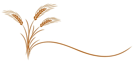 Symbol of a gold ear of wheat. Illustration