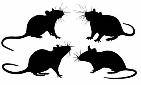 The set of Rat silhouettes. Ilustração