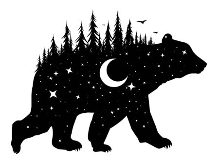 Silhouette of a wild bear with night forest and bird.