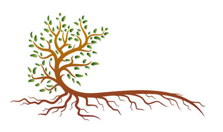 A symbol of a stylized green tree with roots.