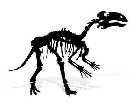 The Skeleton of ancient big dinosaur.