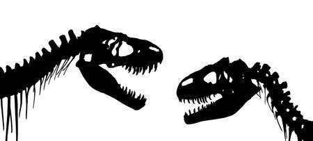 The Skeletons of ancient big dinosaurs.