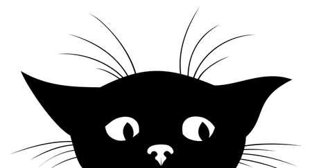 The Silhouette of black kitten.