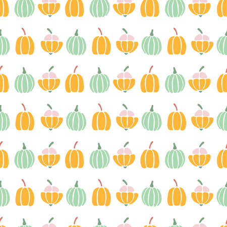 Vector illustration of small cute pumpkins in rows on a white background. Standard-Bild - 157123572