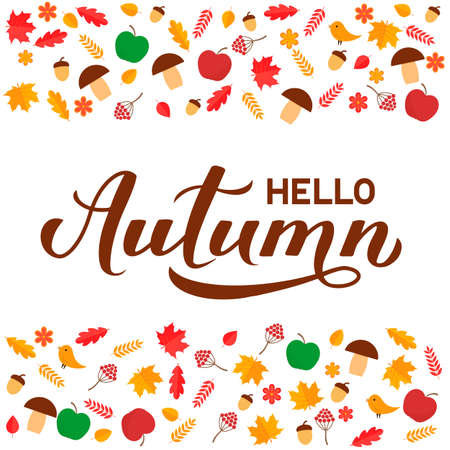 Hello Autumn calligraphy hand lettering with fall leaves, berries and acorns. Seasonal inspirational quote typography poster. Easy to edit vector template for banner, flyer, sticker, postcard, etc.