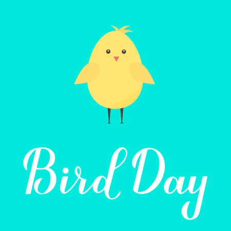 Bird Day calligraphy hand lettering with cute cartoon chick vector illustration. Easy to edit template for greeting card, banner, typography poster, flyer, sticker, etc.