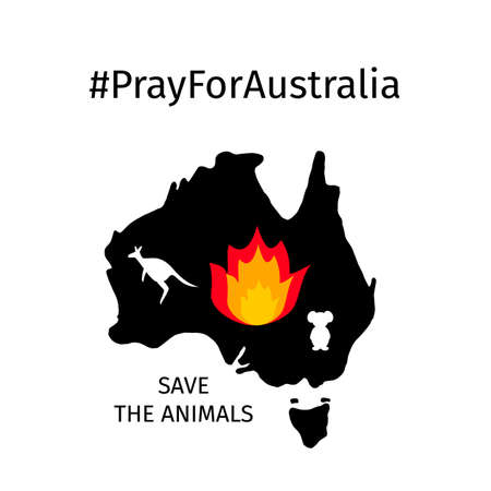 Pray for Australia vector illustration with Australian map in fire, silhouettes of kangaroo and koala isolated on white. Vector template for banner, typography poster, flyer, sticker, etc. Illusztráció