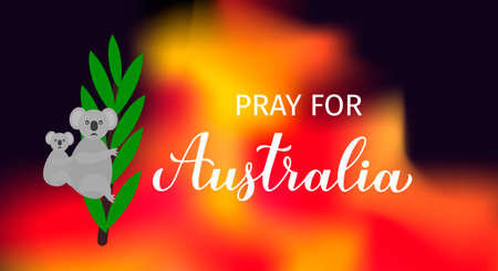 Pray for Australia lettering with sad cartoon koala in fire isolated on white. Vector template for banner, typography poster, flyer, sign, etc.