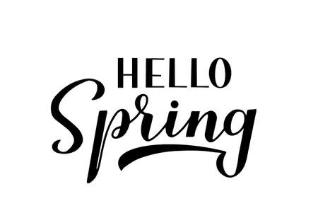Hello spring calligraphy lettering isolated on white. Inspirational seasonal quote typography poster. Handwritten logo design. Easy to edit vector template for banner, flyer, sticker, t-shirt, etc.