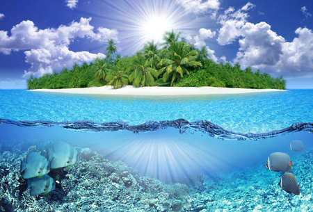 Tropical Paradise and blue sky Stock Photo - 9063886