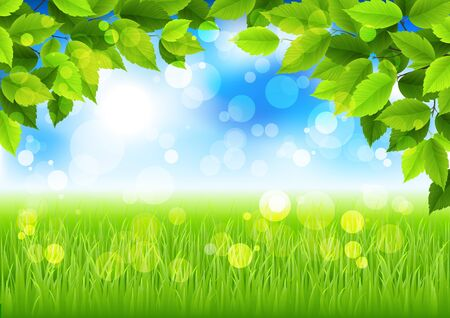 summer landscape Stock Vector - 9849135