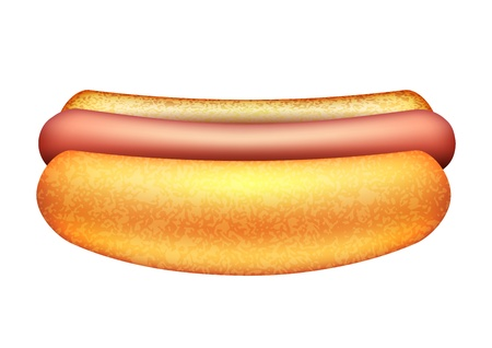 Vector illustration of hot dog