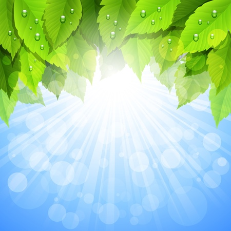 vitality: background with green leaves Illustration