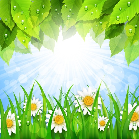 background with green leaves and flowers Vector