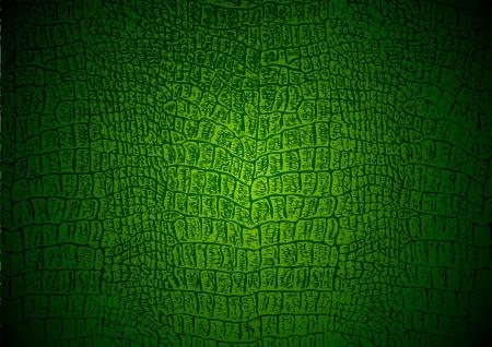 couleur de peau: La texture de crocodile Illustration