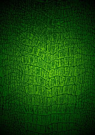 crocodile: La textura de cocodrilo