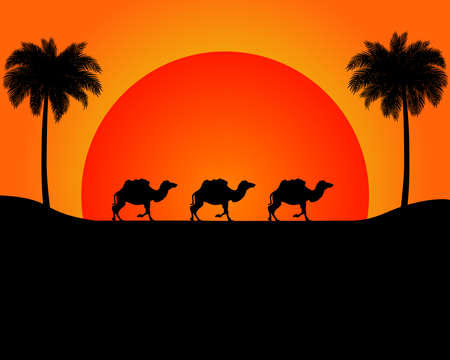 The silhouette of the marching camels in the desert in front of the sunset, with palm trees. Vector eps 10.