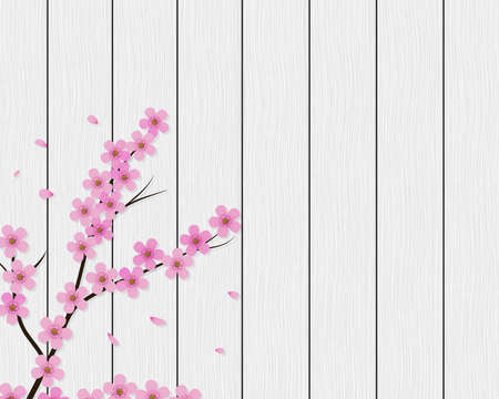 Sakura background. Floral cherry tree branch on white wood planks. Vector eps 10. Ilustração