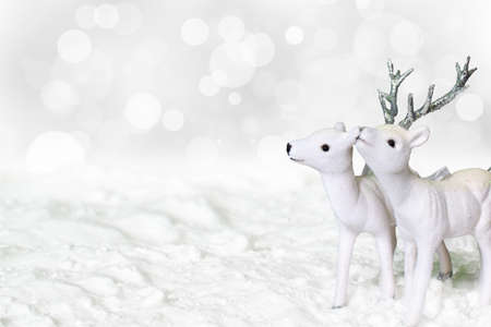 White reindeer and roe deer standing in the snow.