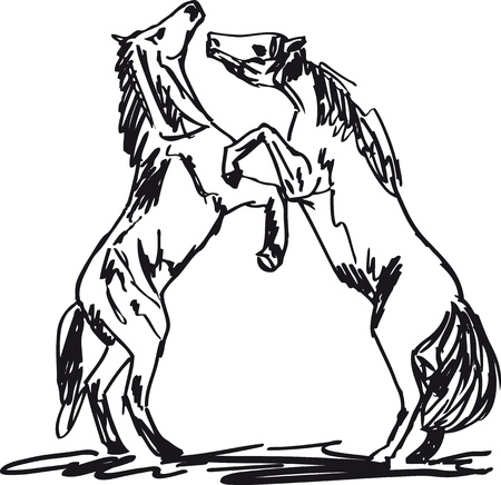 equine: Stallion Sketch. illustration