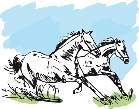 trotting: Stallion Sketch. illustration