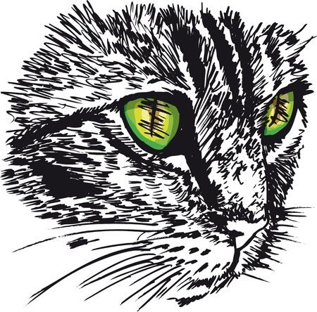 no lines: Sketch of curious little cat looking at something on the ground.