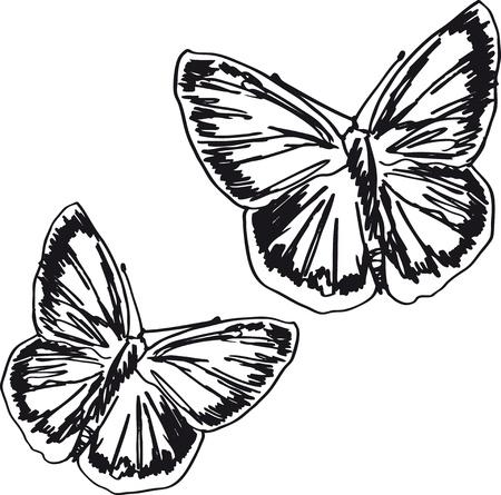 Butterfly sketch. illustration Vector