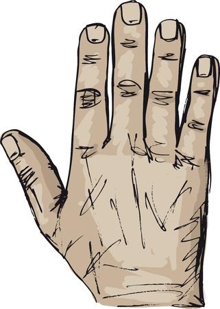 Esquisse d'illustration vectorielle main droite et à gauche Vecteurs