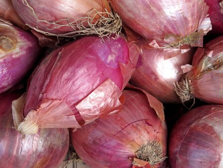 sweet and savoury: Close-up of fresh red onions