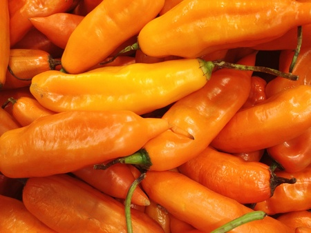 Peruvian yellow chili pepper  photo